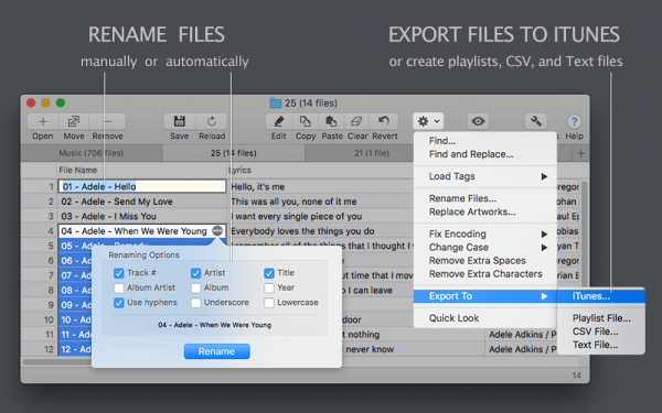 Tag Editor for Mac - Amvidia