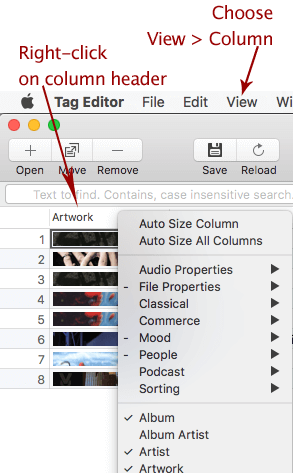 Customization of columns layout in Amvidia Tag Editor for Mac